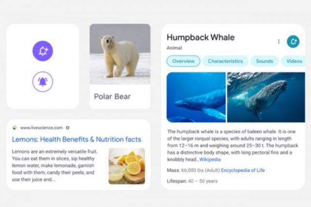 Tampilan Google Search di Perangkat Seluler Berubah